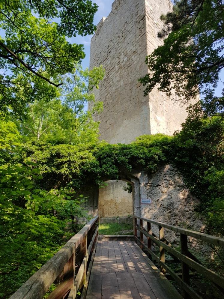 08 Brücke und Eingang zur Ruine Rauheneck