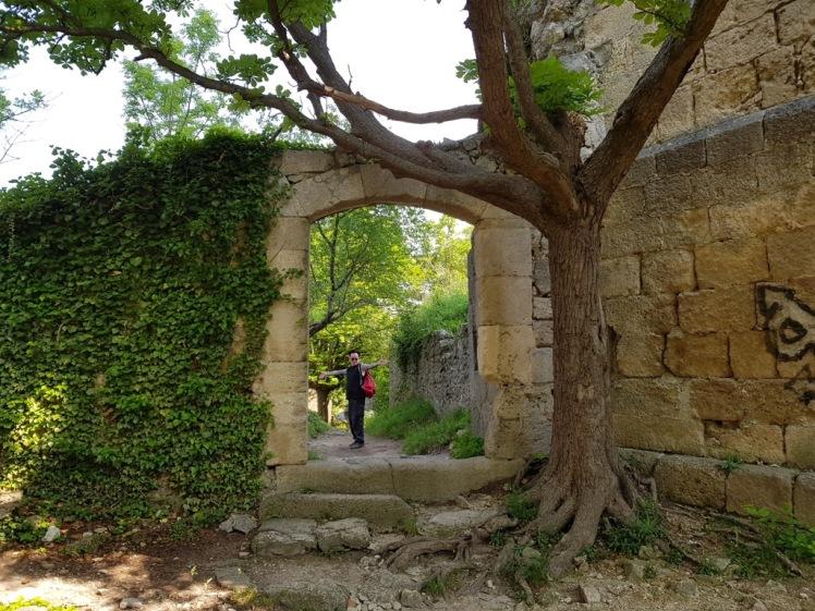 10 Eingangsbereich Ruine Rauheneck 2