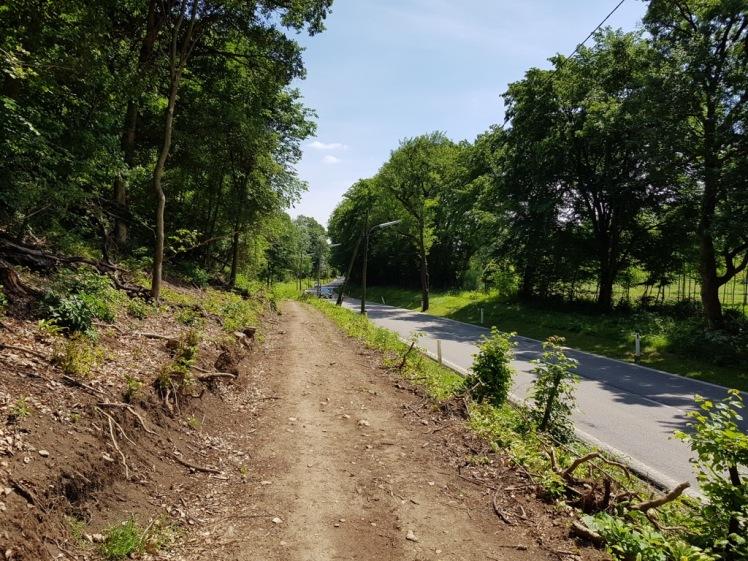 15 geschlägerter Weg neben der Straße nach Vorderhainbach