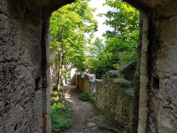 19 Ruine Rauheneck Impressionen 5
