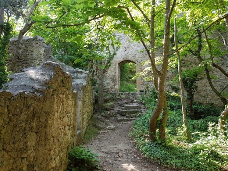 29 Ruine Rauheneck Impressionen 15