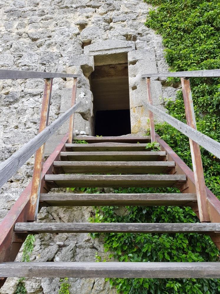 40 Aufstieg zum Turm Ruine Rauheneck 3
