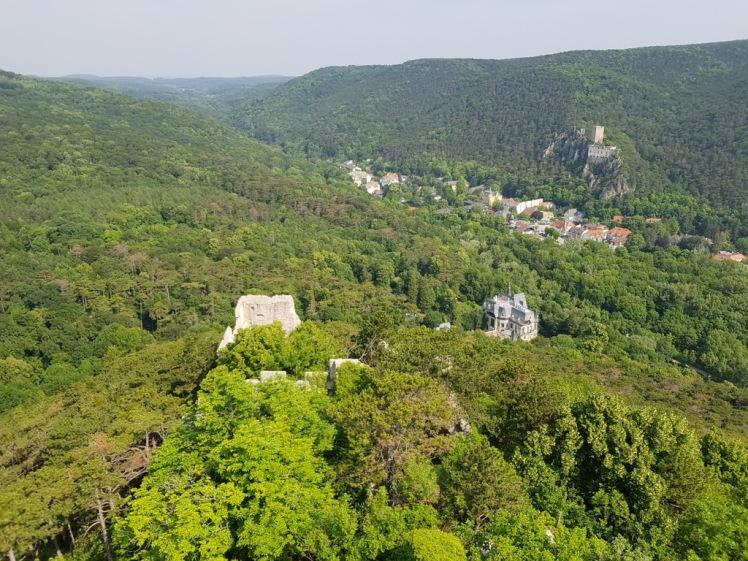 44 Ausblick vom Turm Ruine Rauheneck 1