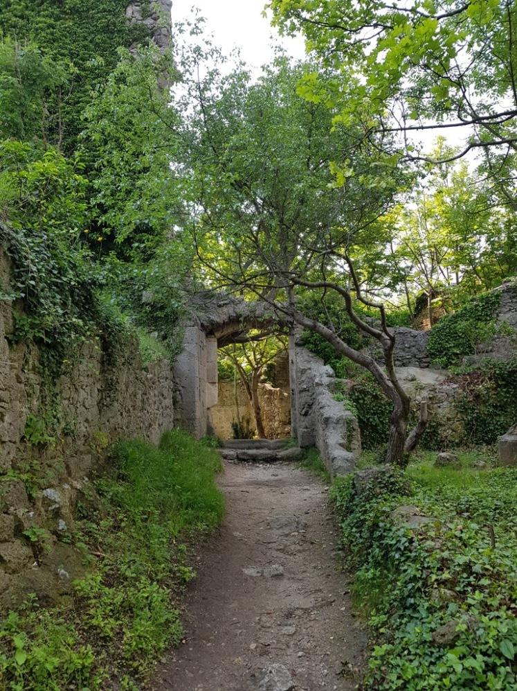 54 Ruine Rauheneck Impressionen 30