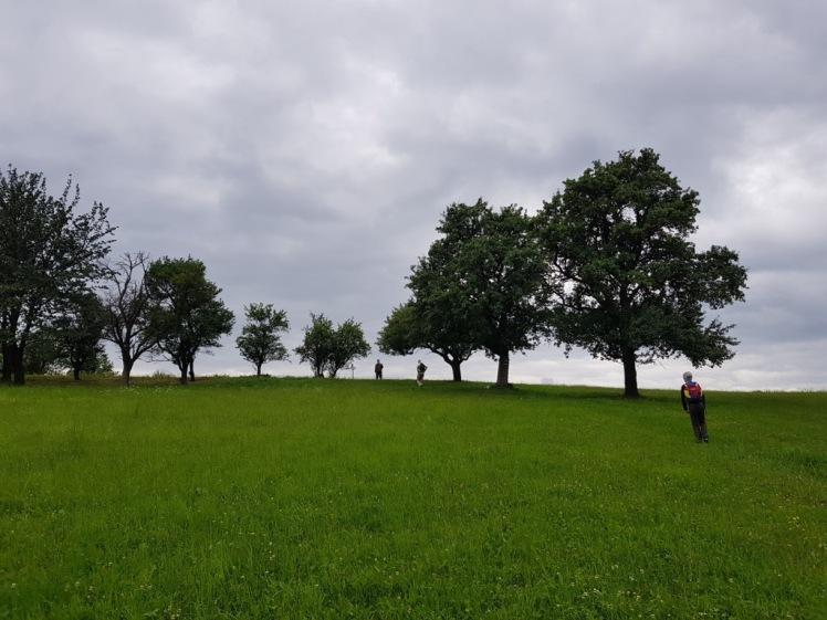19 Wegkreuzung vor Waldhof 2