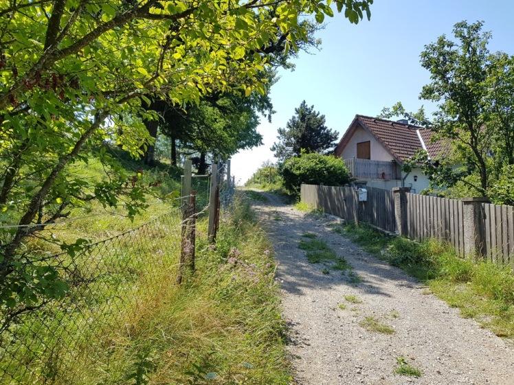 02 bei den Häusern auf dem Pfalzberg-Plateau