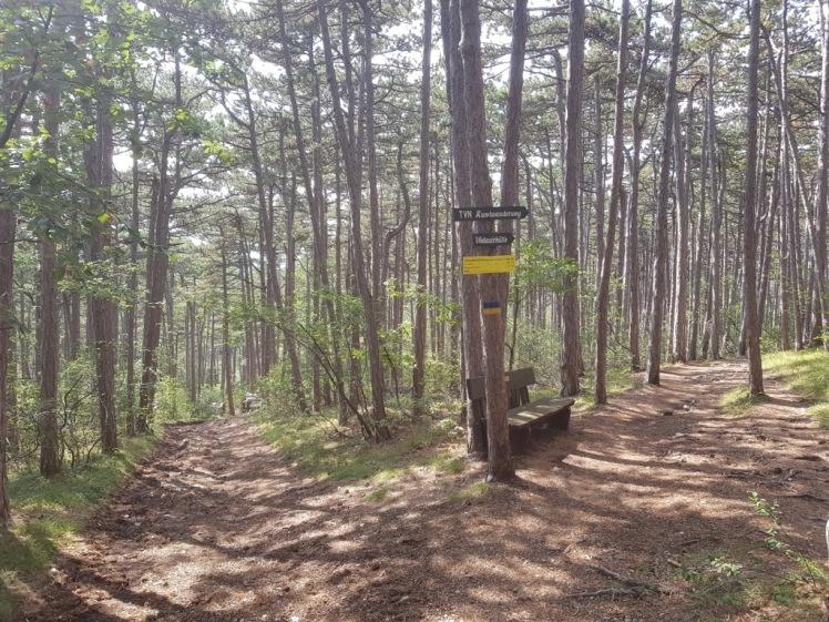 21 Wegkreuzung zur Vöslauerhütte 2