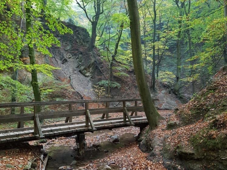 26 Hagenbachklamm Herbstimpressionen 13