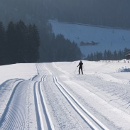 cross-country-skiing-113018_1920