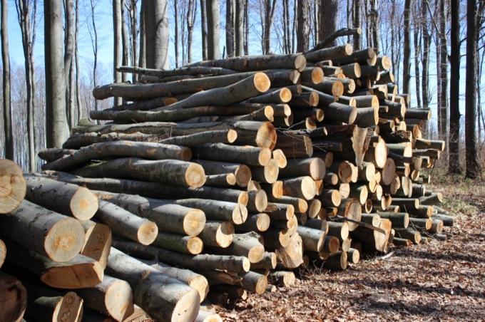 47 Holzstoß 1.JPG