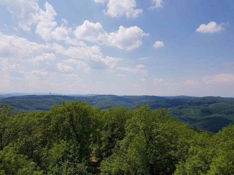 15 Aussicht von Habsburgwarte.jpg