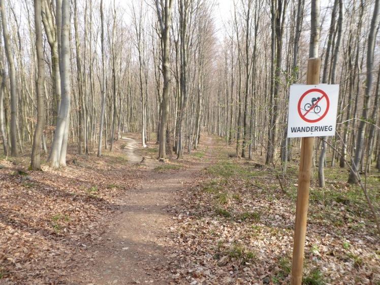 70 Wanderweg zwischen Mountainbike-Abfahrten.JPG