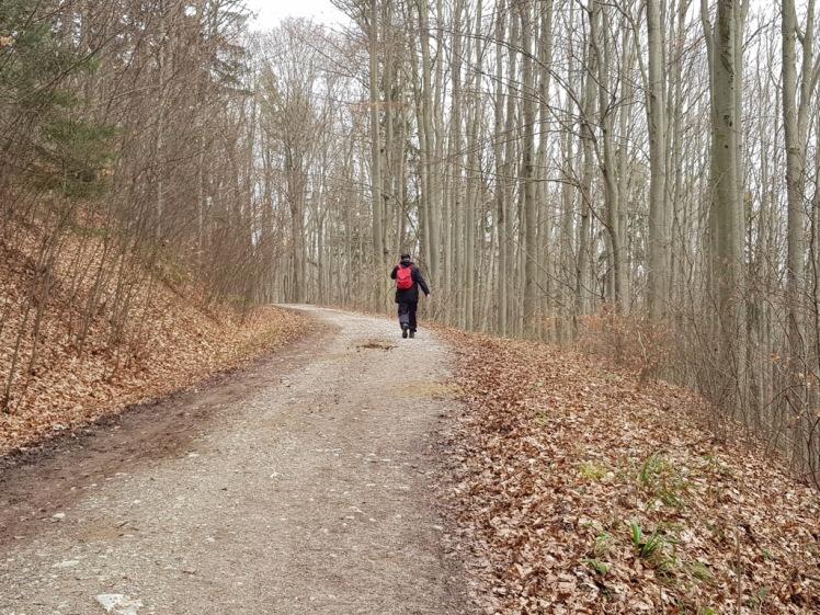06 Wanderer Richtung Hochroterd