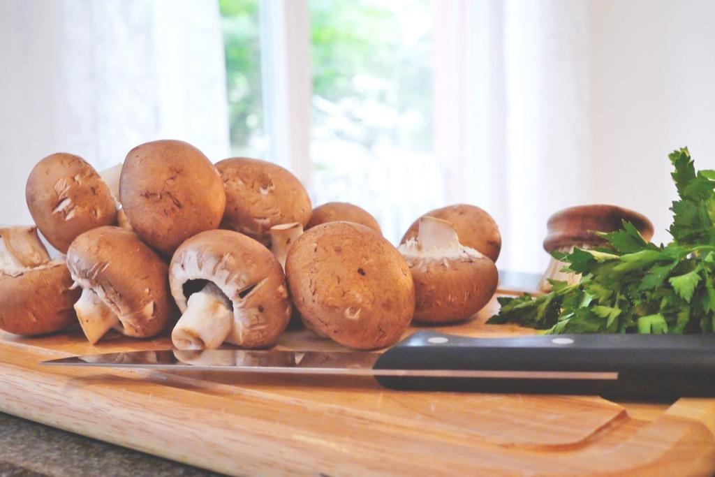 mushroom-817845_1920