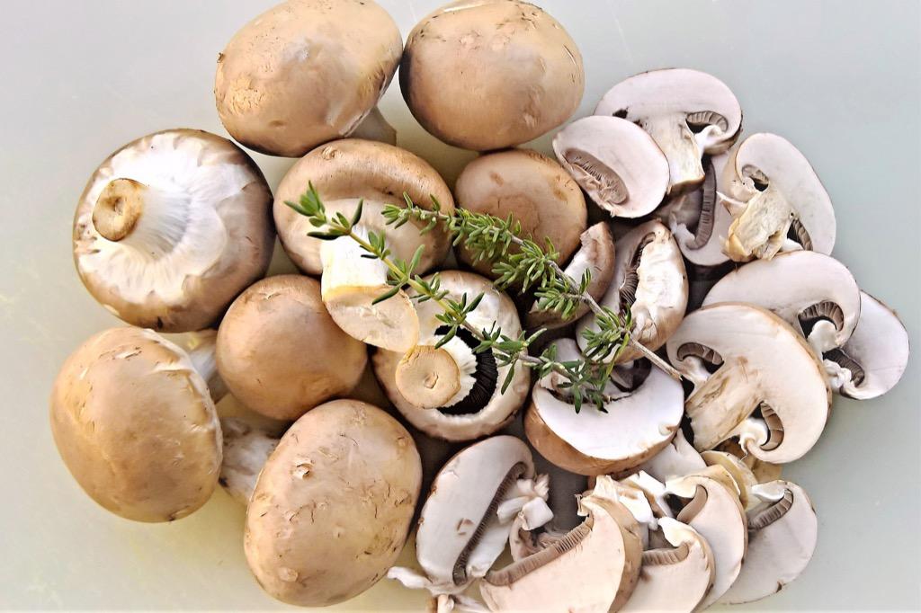 mushrooms-4510369_1920