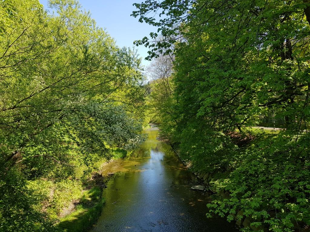 39 Wienfluss bei Purkersdorf-Sanatorium Holzbrücke
